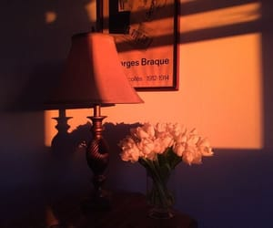 aesthetic, orange, and flowers image