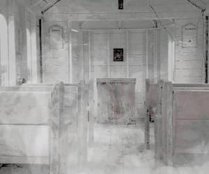 coven, season 3, and tumblr image
