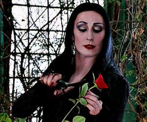 gif, the addams family, and Morticia Addams image