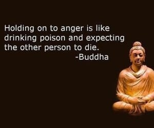 Buddha, quotes, and anger image