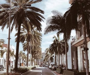 aesthetic, rodeo drive, and la image