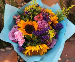 colorful, colors, and flowers image