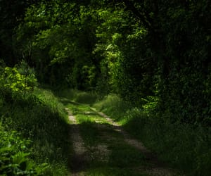 dirt road, landscape, and green image