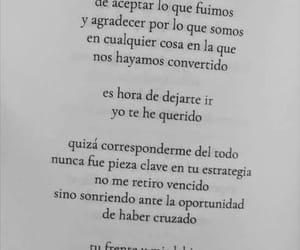Image by Mariana Gomez