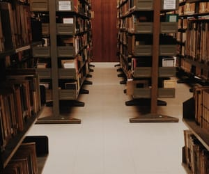 biblioteca, books, and library image