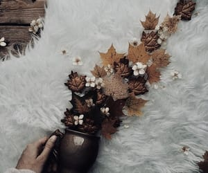 autumn, cup, and flowers image