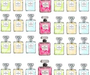 back, perfume, and smells image