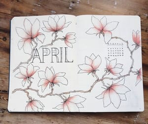 flowers, pink, and bulletjournal image