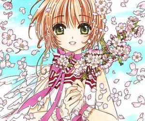 anime, anime girl, and sakura kinomoto image