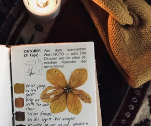 art, fall, and journal image