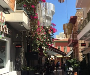 crete, flowers, and Greece image