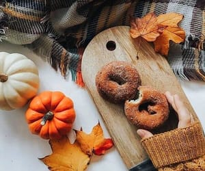 autumn, blanket, and donuts image