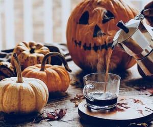 pumpkin, autumn, and fall kép