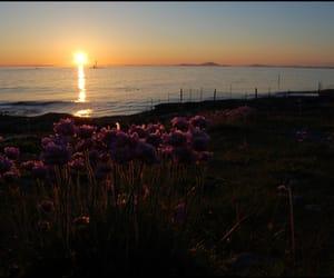 beautiful, beauty, and coast image