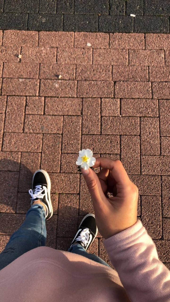 flowers, girl, and vans image