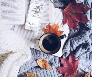 autumn, book, and coffee image