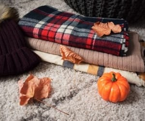 fall, autumn, and cozy image