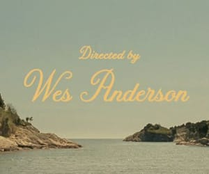 cinema, movie, and wes anderson image