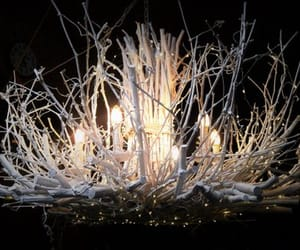 enchanted forest, etsy, and fairy lights image