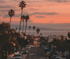 sunset, city, and palms image