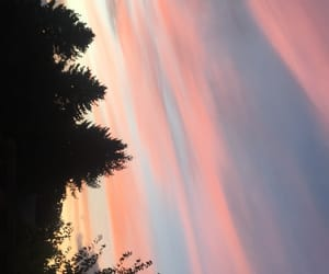 sunset and trees image