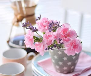 beautiful, cool, and flower image
