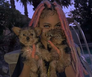 puppy, dreads, and eyes image