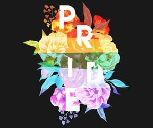 rainbow, lgbt, and flowers image