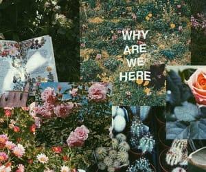 art, summer, and kaktus image