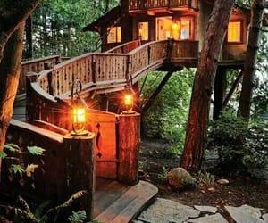 floresta, cabana, and luz image