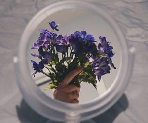 beautiful, mirror, and fake image
