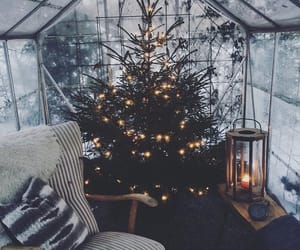beauty, christmas, and cozy image