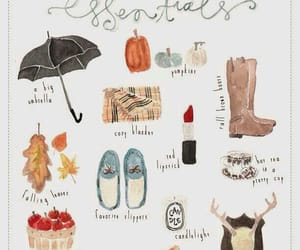 autumn, fall, and essentials image