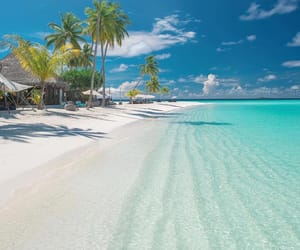 beach, travel, and Maldives image