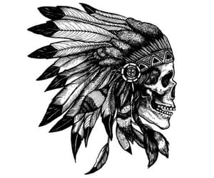 skull, art, and feathers image