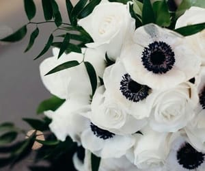 black, girl, and bouquet image