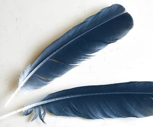 blue, feather, and ravenclaw image