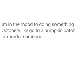 fall, autumn, and funny image