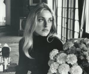 sharon tate, flowers, and model image