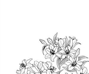 overlay, background, and black image