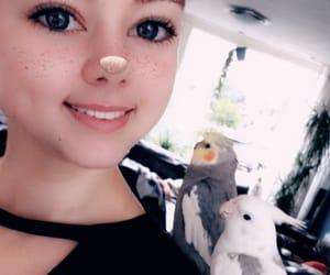 animal, birdies, and pip image