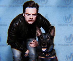 sebastian stan and Marvel image