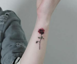 arm, flower, and rose image