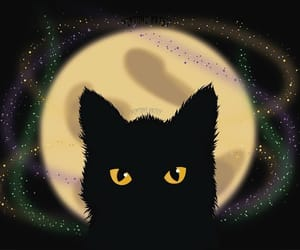 cat, design, and Halloween image