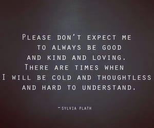 cold, kind, and sylvia plath image