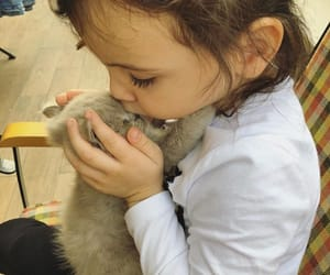 babies, baby, and cats image