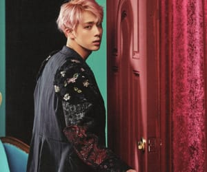 jin, wings, and blood sweat and tears image