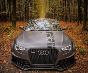 audi, autumn, and awesome image