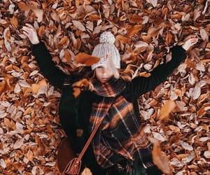 autumn, tumblr, and beautiful image
