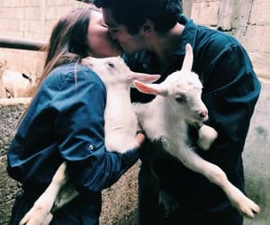 goals, mvz, and goats image